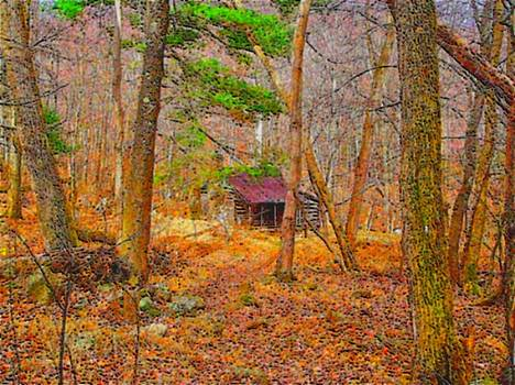 Log Cabin in the Deep Woods by E Robert Dee
