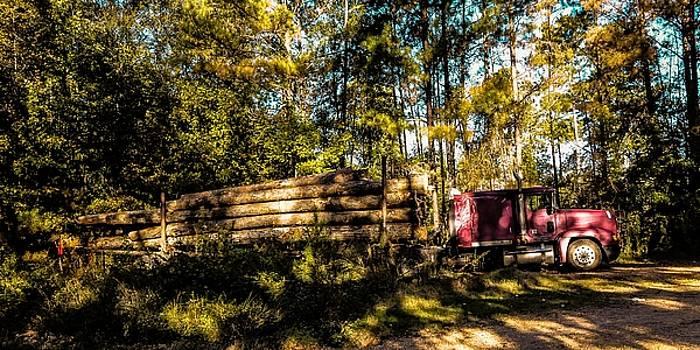 Log Truck by Leon Hollins III