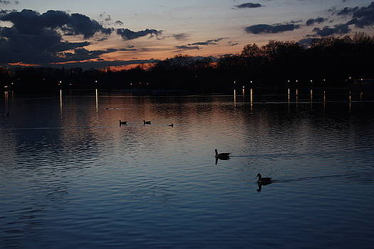 Yvonne Ayoub - Londons Hyde Park after Sundown