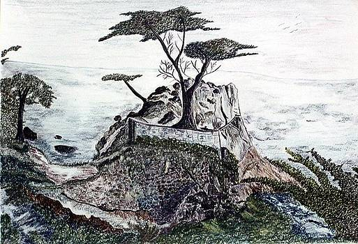 Lone California Tree by Diane Frick