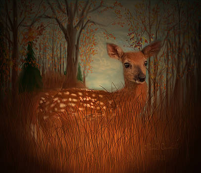 Lone Fawn by Kevin Caudill