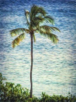 Lone Palm  ... by Chuck Caramella