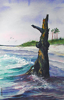 Lone pine Crooked Island by Chuck Creasy