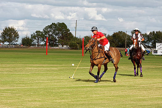Lone Polo Player by Sally Weigand