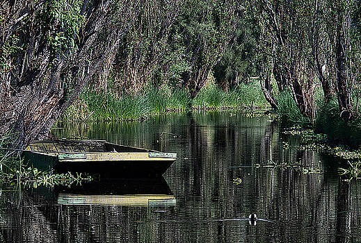 Lonely Barge at Xochimilco by David Resnikoff