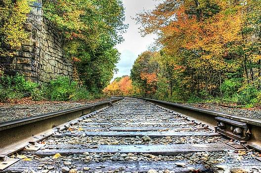 Lonely Tracks by Janet Moss