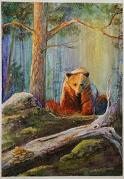 Lonesome Bear by Mona Davis