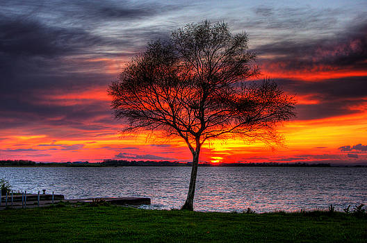 Lonesome Sunset  by Kim Shatwell-Irishphotographer