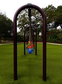 Lonesome Swings by Chris Mercer