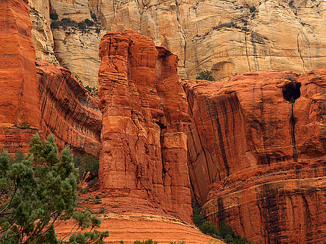 Long Canyon Trail by James Peterson