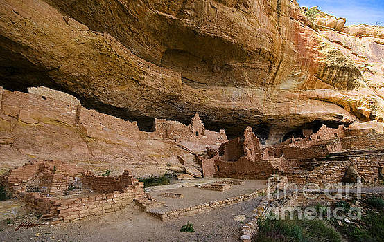 Long House Cliff Dwelling by Jim Fillpot