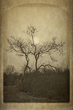 Frank Winters - Long Pasture Wildlife Perserve.
