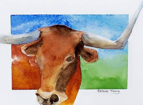 Longhorn by Celene Terry