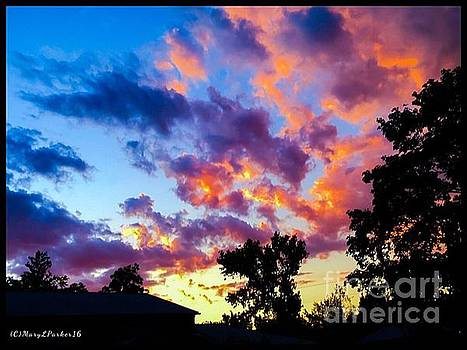 Looking At The Sunset by MaryLee Parker