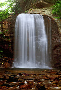 Looking Glass Falls 001 by George Bostian