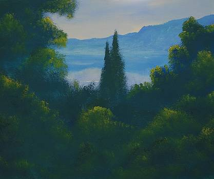 Looking North by David Snider