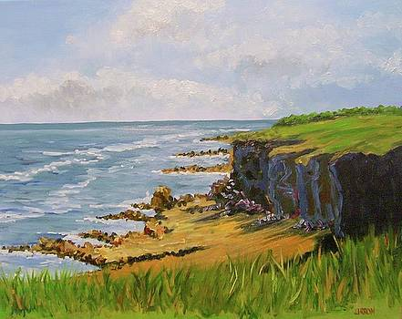 Looking South From Souter by Fred Urron
