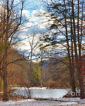 Looking Through The Forest at Hungry Mother State Park by Kerri Farley