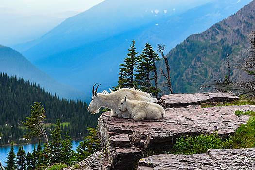 Lookout Ledge by Joseph Rossbach