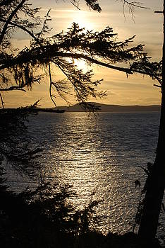 Lopez Island Sunset by Gene Ritchhart