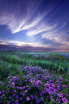 Lord Don't Go by Phil Koch