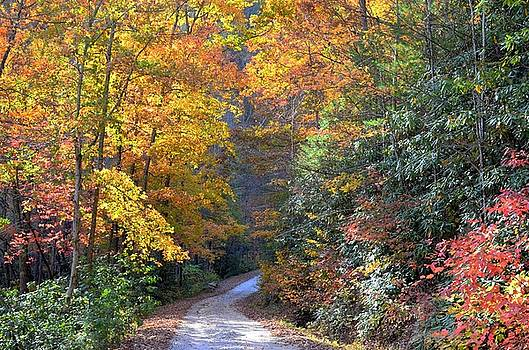 Lost Road by Bob Jackson