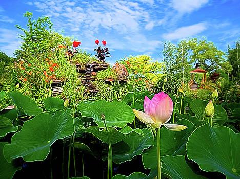 Lotus Alchemy by William Horden