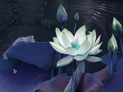Lotus by Dheeraj Verma