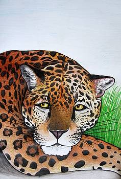 Lounging Leopard by MaryEllen Frazee