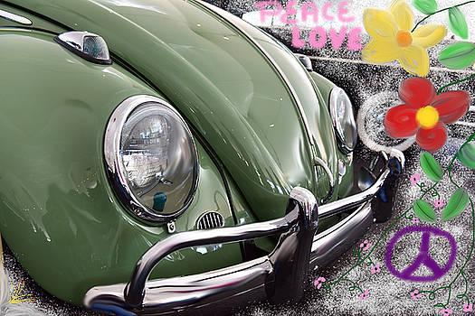 Love Bug by Richard Gehlbach