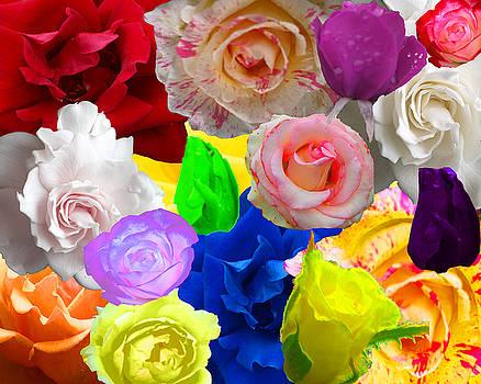 Love In Roses by Kim