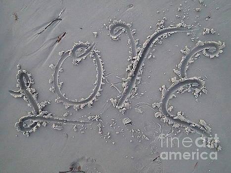 Love by Robert Nickologianis
