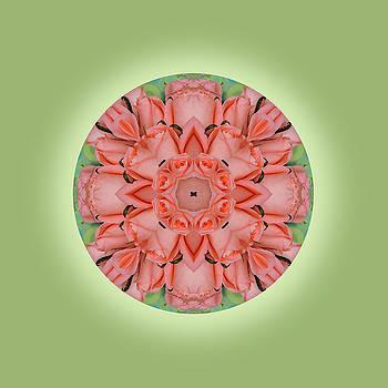 Love Roses Mandala by Jorge Gomez