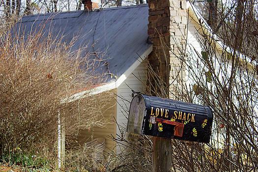 Love Shack by Tammy Chesney