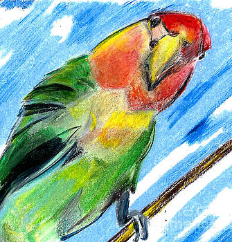Lovebird by Elizabeth Briggs