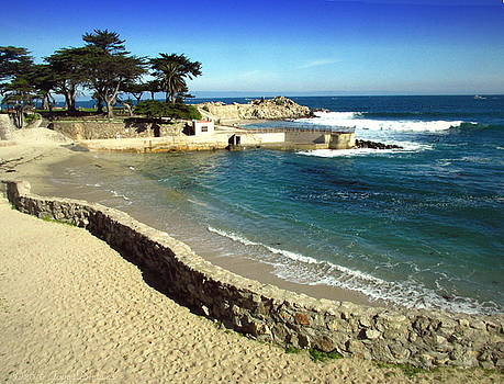 Joyce Dickens - Lovers Point Pacific Grove CA