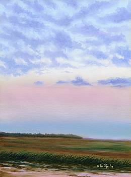 Low Country Clouds by Eve  Wheeler