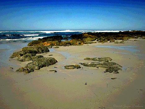 Joyce Dickens - Low Tide At Asilomar