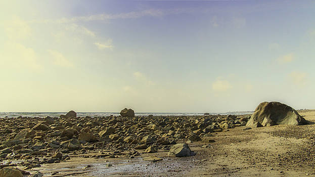 Low Tide at Beadle's Rocks  by Kate Hannon