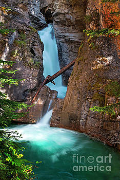 Lower Falls in Johnston Canyon - Banff National Park by Yefim Bam