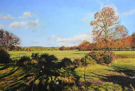 Harry Robertson - Lower fields at Rhug