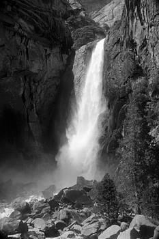 Lower Yosemite Falls by Daren  Le