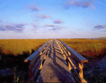 Lowlands Bridge by Gary Grayson