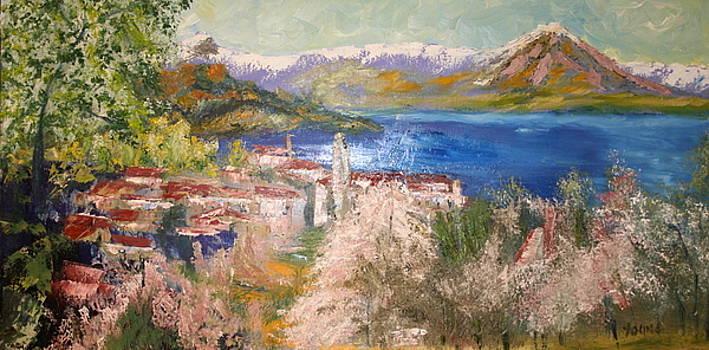 Lucerne by Ellen Young