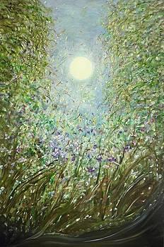 Lucia  by Sara Credito