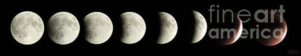 Lunar Eclipse 92715 by Sharon Marcella Marston