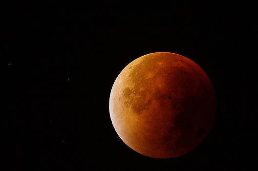 Lunar Eclipse by Ron Harpham