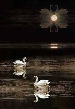 Lunar Magic by Willa Davis