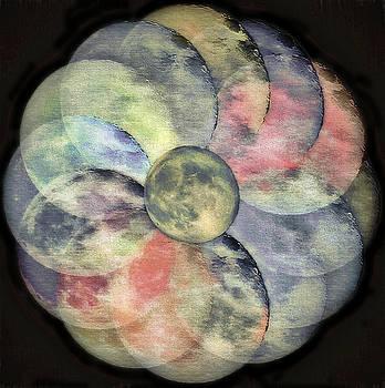 Steve Ohlsen - LunarPlex  2 - Blue Harvest Moon Multiplied