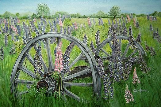 Lupins and Wagon Wheels by Connie Rowsell